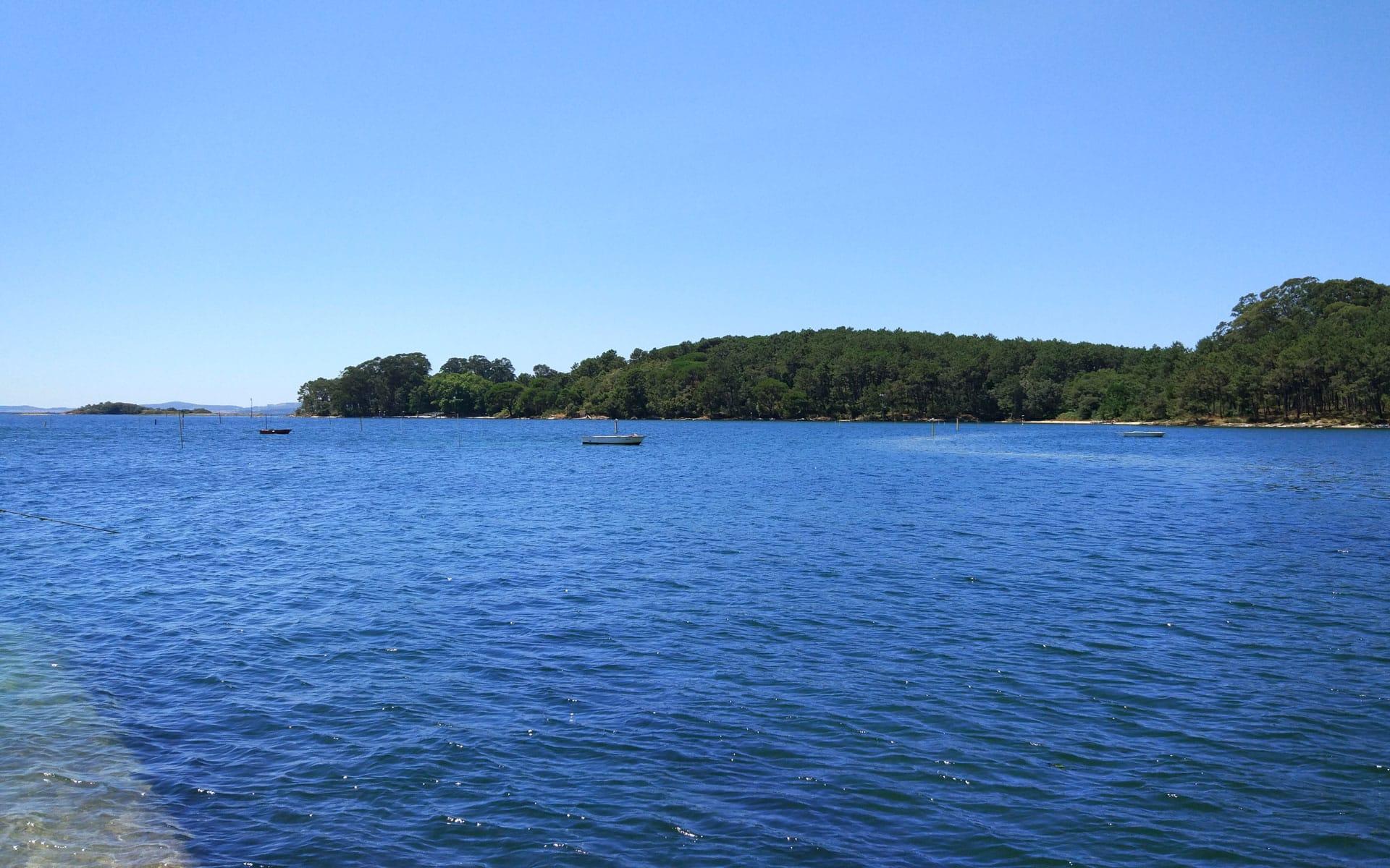 Isla de Cortegada en Carril