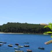 Isla de Cortegada